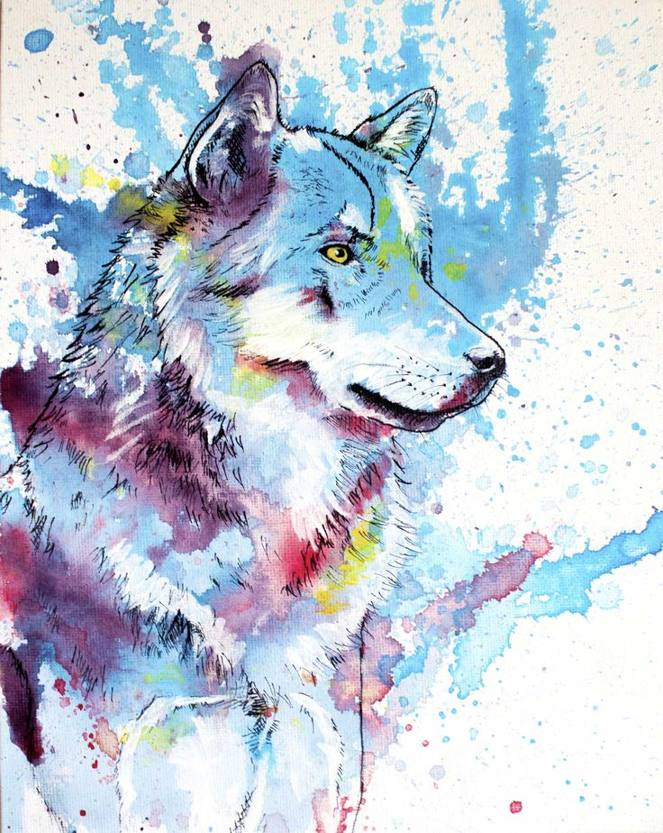 Best 25+ Wolf painting ideas on Pinterest | Wolf drawings ... Colorful Wolf Painting