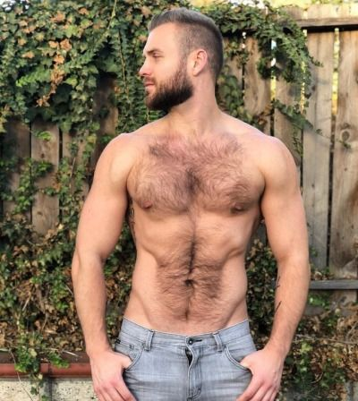 free-hairy-men-orgies