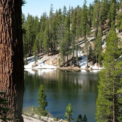 Your Complete Reds Meadow, CA, Camping Guide