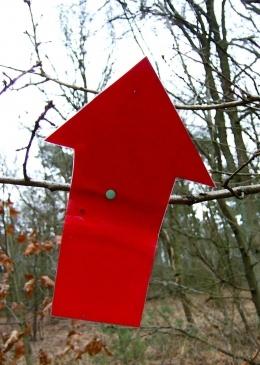 Rode pijl ★ ansichtkaart / wenskaart in envelop ★ vanaf € 1,59 ★ © JuPa JuPa