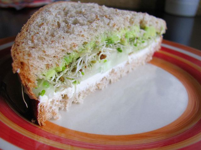 1000+ ideas about Alfalfa Sprouts on Pinterest | Sprouts, Sprouting ...