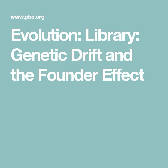 Evolution: Library: Genetic Drift and the Founder Effect