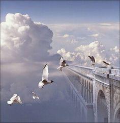 """""""Αφήστε με, ν' ανασάνω ουρανό, να ψηλαφίσω, το δρόμο των πουλιών, ν' απολαύσω ξαστεριά, να κυματίσει το χαμόγελο μου στον ώμο του ανέμου αφήστε με, να διασχίσω τον ωκεανό, ανάμεσα σε θάλασσες κι αλμύρα, να φτερουγίσει ανέμελα ο πόθος μου, στ' ανάστημα της μοίρας αφήστε με, να ταξιδέψω στο θόλο της γης, εκεί που το φεγγάρι κρύβει τον ίσκιο της οργής, εκεί που η λευτεριά, δε θ' αστοχήσει πάλι μα μ' ένα φιλί θα θρέψει τη ψυχή και τ' όνειρο, θα πάρει τη σκυτάλη"""""""
