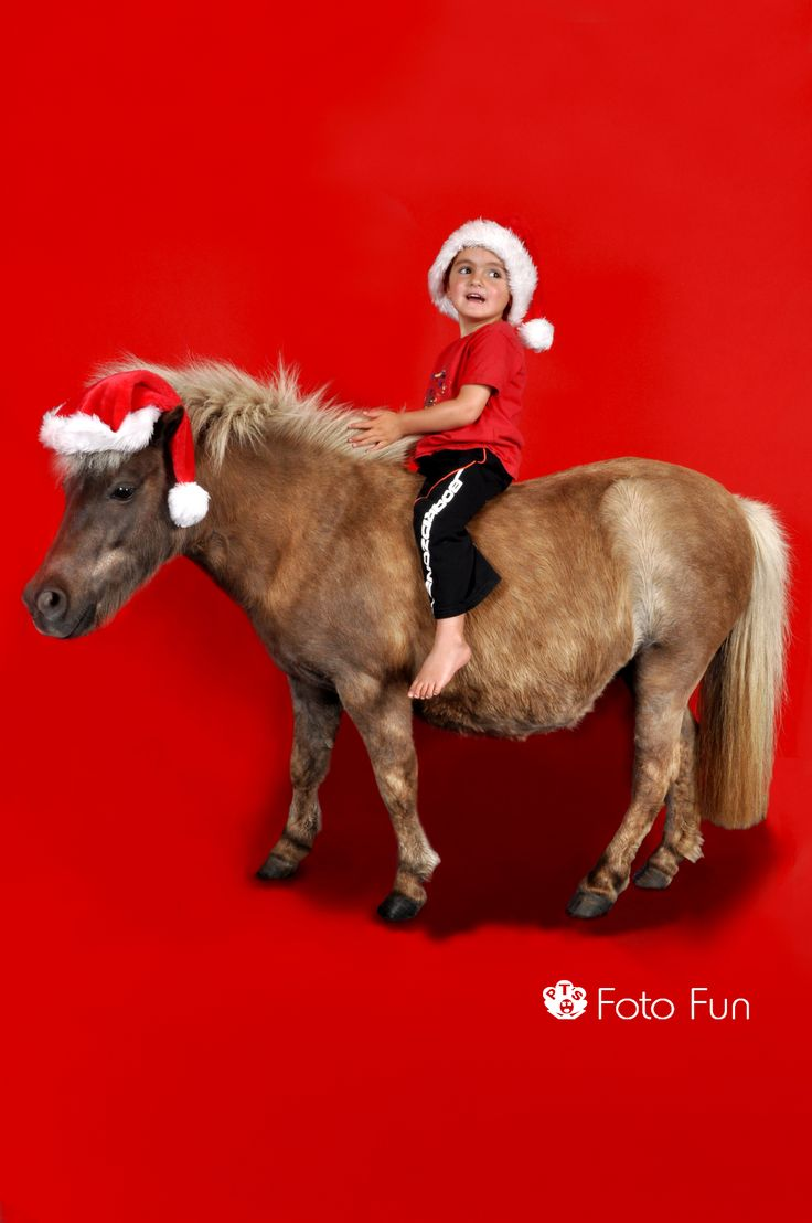 Boy and horse in red background