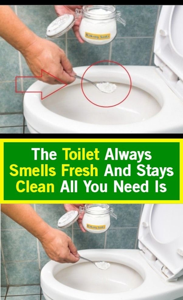 All You Need Is Fresh The Toilet Is Fresh And Stays Clean In 2020 Smell Fresh Cleaning Keep It Cleaner