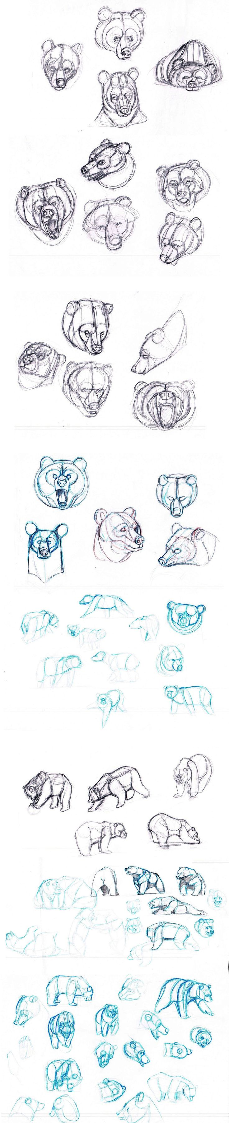 best 25 bear sketch ideas only on pinterest bear drawing bear