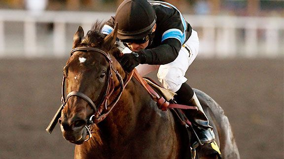 Shared Belief, the champion 2-year-old male of 2013, died Thursday after a colic episode.