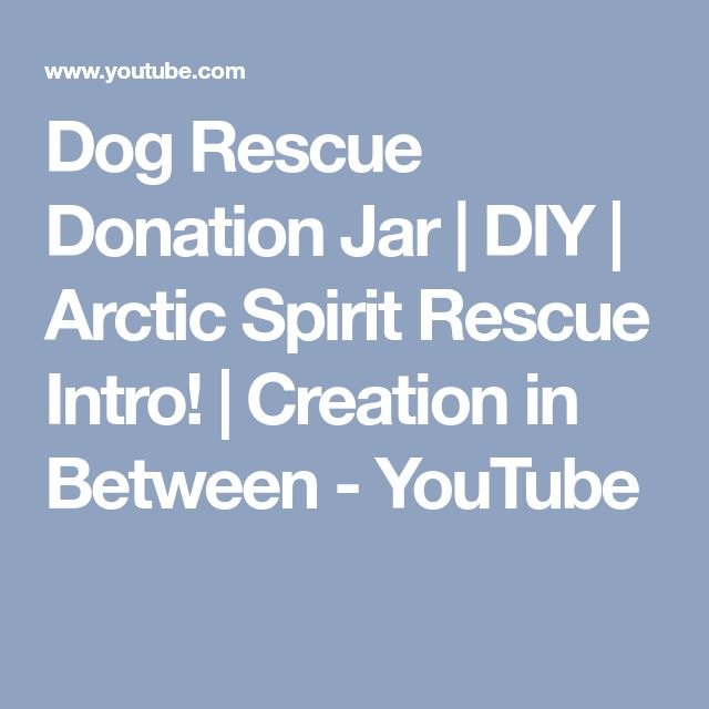 Dog Rescue Donation Jar | DIY | Arctic Spirit Rescue Intro! | Creation in Between - YouTube