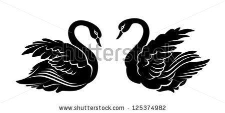 Black swan by Skalapendra, via Shutterstock