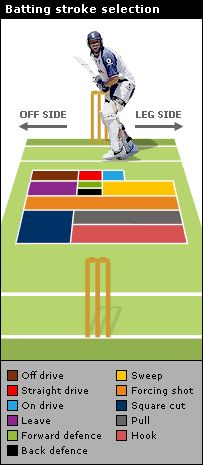 Cricket Batting Stroke Selection #cwc15  Interesting stuff