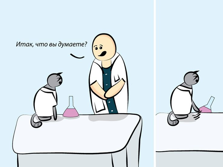 Правдивый комикс про усатого и хвостатого профессора.
