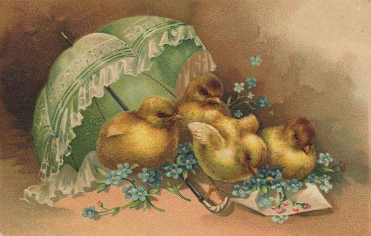 Пасхальные открытки цыплята