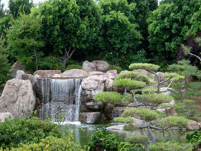 Japanese Friendship Garden Downtown Phoenix Admission 5 Tea Ceremony 25 Open October