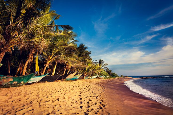 Bienvenue au Sri Lanka pour votre lune de miel  : http://www.mariage.com/lune-de-miel/bienvenue-au-sri-lanka-lune-miel