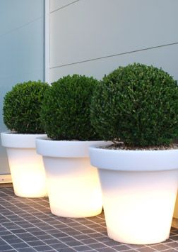 love the illuminated planters