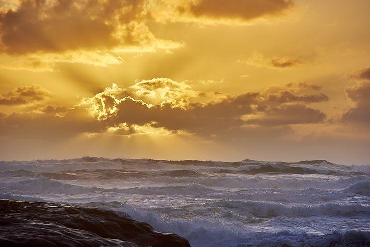 Heavenly Muriwai Sunset