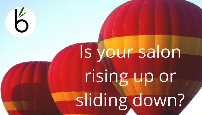 Want your salon to soar? Check out our latest blog to keep it flying high http://www.bambooconsulting.nz/blog/is-your-salon-rising-up-or-sliding-down