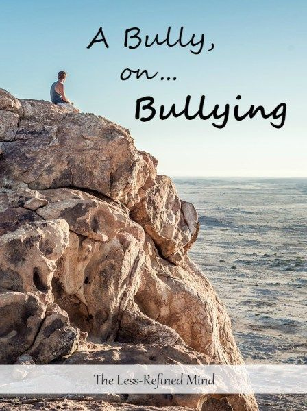 Confessions of a #bully.