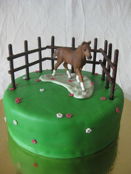 20130614 gâteau cheval dans l'enclos - horse in paddock (32)