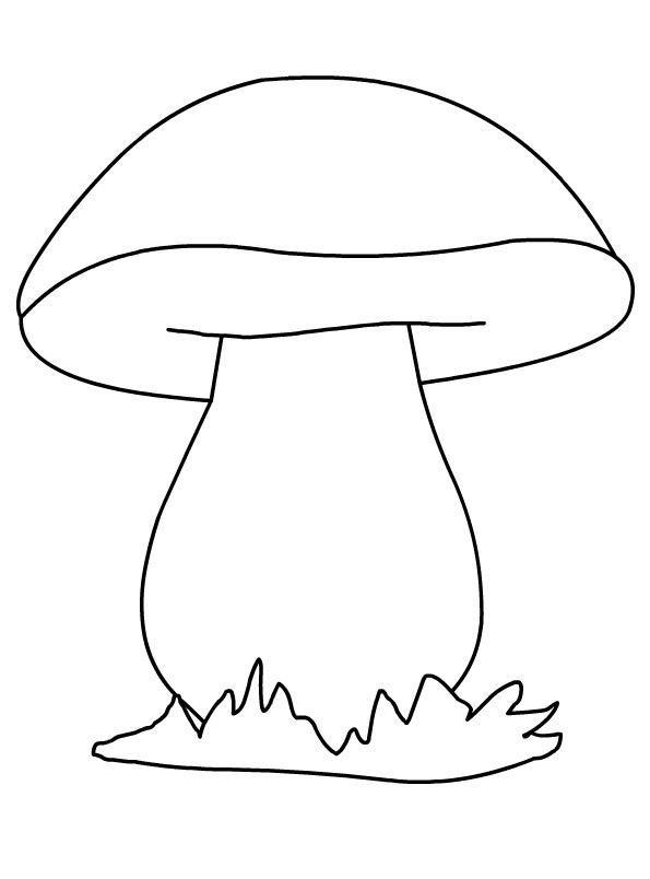 Раскраска-грибы в картинках для детей