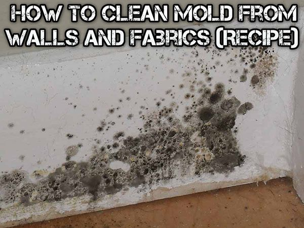 How To Clean Mold From Walls And Fabrics Recipe Diy Cleaners Pinterest Fabrics Walls