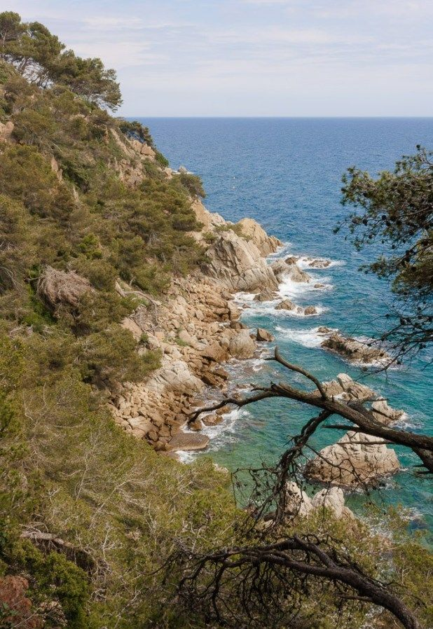 Things To Do In Lloret De Mar Costa Brava Things To Do Costa