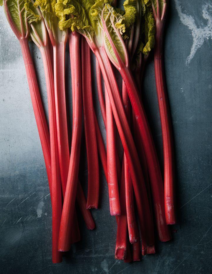 HG | Rhubarb!