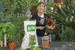 How to Make Organic Chicken Feed | eHow