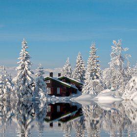 Cabin in dreamforest by Odd Smedsrud on 500px.com