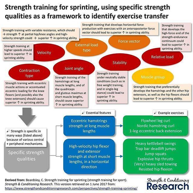 25+ parasta ideaa Pinterestissä Eccentric hamstring exercises - training agreement
