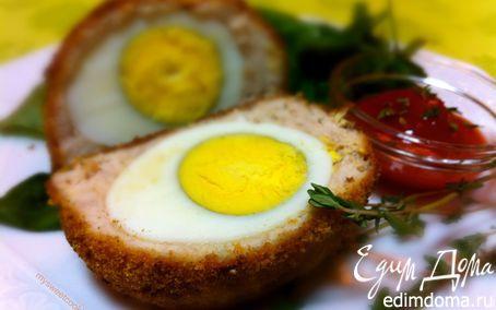 Запеченные в духовке шотландские яйца | Кулинарные рецепты от «Едим дома!»