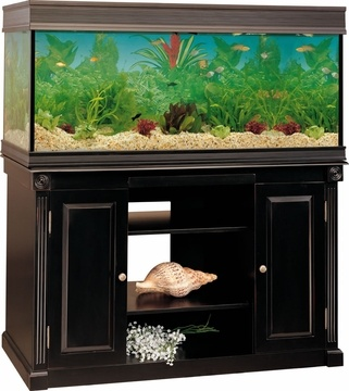 55 gallon aquarium stand plans woodworking projects plans for 55 gallon fish tank petco
