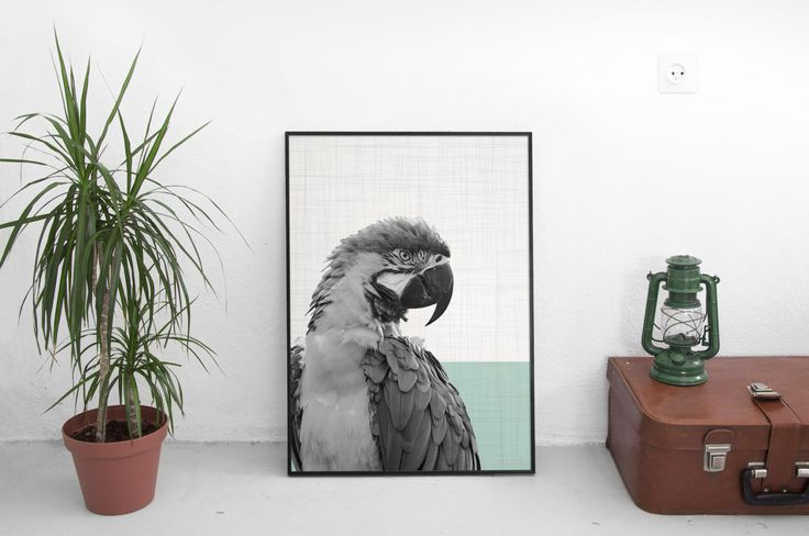 Parrot Print, Woodland Nursery, Animal Print, Woodland Animals, Nature Art, Bird Photography, Contemporary Art, Large Wall Art by SilBarragan on Etsy