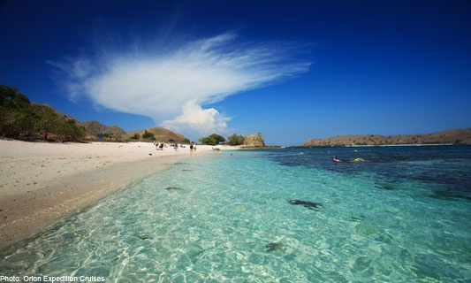 Komodo Island Indonesia! A bit scary too...