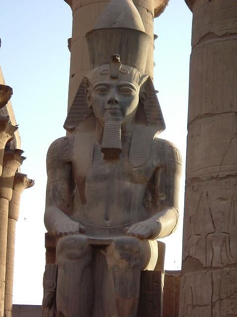Egitto 2008