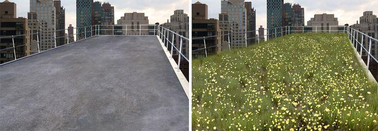 Eine Studie der University of Melbourne hat bewiesen, dass sich Mikro-Pausen mit Blick auf städtisches Grün positiv auf die Konzentration auswirken