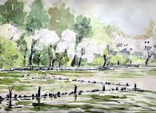 Art Collection: Watercolor 17
