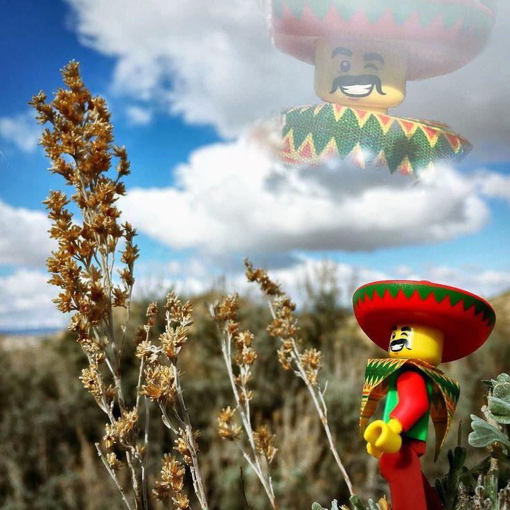 Silence is argument carried out by other means. - Che Guevara . Los susurros de artemisa cuando el viento empuja las nubes a través del azul profundo. El silencio es interrumpido por una ardilla que huye de las garras del halcón de cola roja. Alfonso le gusta el silencio. . The sagebrush whispers when the wind pushes clouds through the deep blue. The silence is disrupted by a squirrel fleeing from the claws of the red tail hawk. Alfonso loves silence. . #toyphotography #toyartistry…