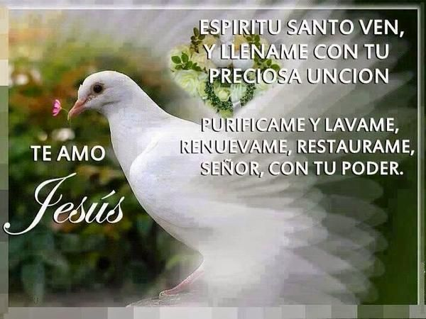 blog católico, Espíritu Santo, Espíritu Cristiano, enlaces católicos, metabuscador cristiano, blogger