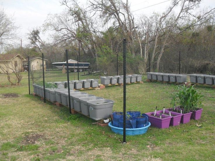 218 Best Images About Urban Garden Sub Irrigated Self