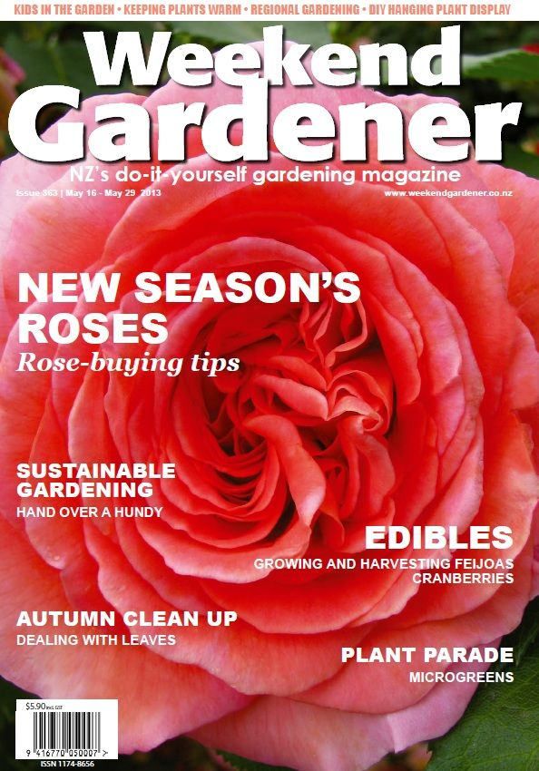 363 previews roses new to the market this year. You will find fun garden projects for the children in our new section 'Kids 'n' dirt', and our editor Kineta Knight Booker takes us 'Up the Garden Path' to shows us what she'll be doing in her garden over the weekend. Also, Jade Temepara explains how her 'Hand Over a Hundy' project is changing people's lives across New Zealand.