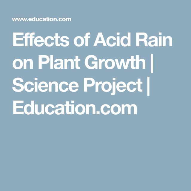 Effects of Acid Rain on Plant Growth | Science Project | Education.com