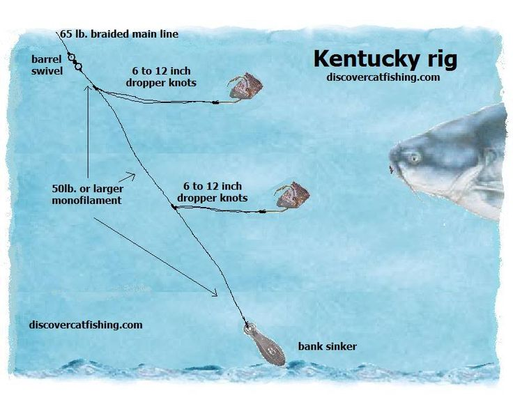 Best 25 catfish rigs ideas on pinterest fishing rigs for Good fishing knots