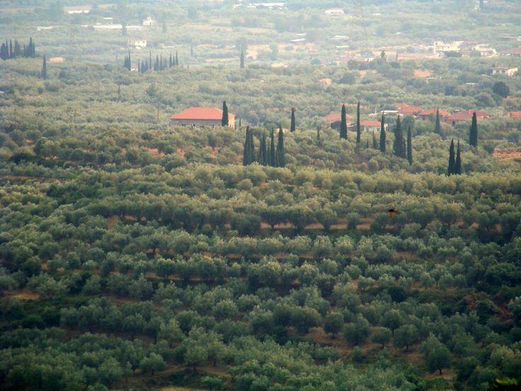 AGRINIO_REGION.jpg (2048×1536)