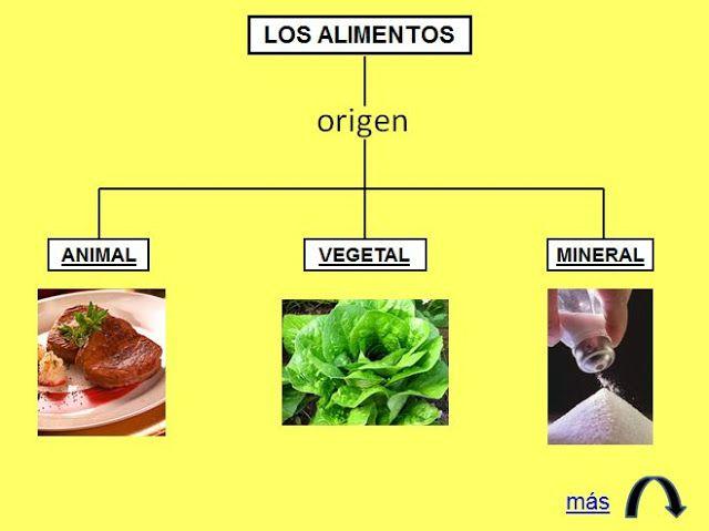 los+alimentos+de+origen+animal+vegetal+y+mineral+para+niños