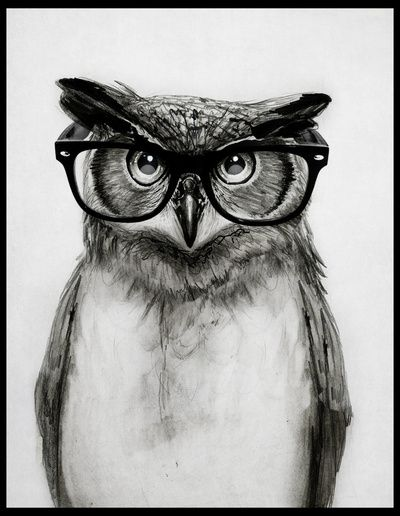 Mr. Owl Art Print http://society6.com/product/Mr-Owl-DHg_Print#1=45