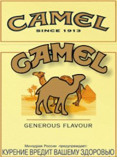 300 best images about camel on Pinterest | Tins ... | 240 x 320 jpeg 17kB