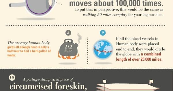 Weird things about the human body