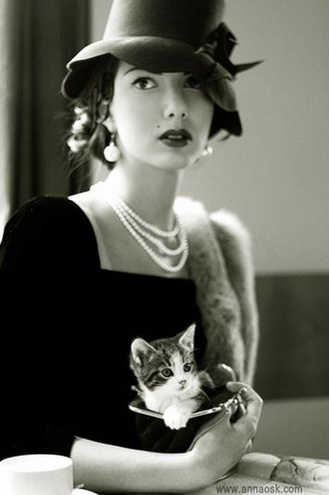 hats are a lost artVintage Woman, Cat, 40S Style, Vintage Photos, Paris Cafes, Vintage Hats, Kittens, Vintage Girls, Kitty