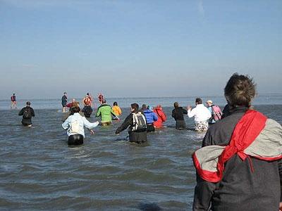 Wadlopen walking from Friesland to an island